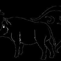 Гороскоп на 2015 год для Свиньи (Кабана)