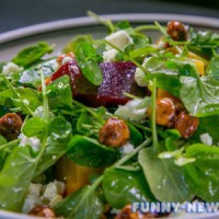 6 простых и вкусных рецептов салатов из шпината к Новому году 2018