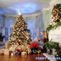 Суть новогодней ночи