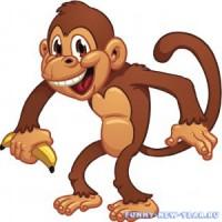 Учимся рисовать красивую обезьяну